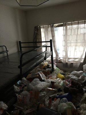 ゴミ屋敷清掃:札幌市東区の施工前