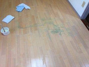 賃貸住宅での特殊清掃の施工前
