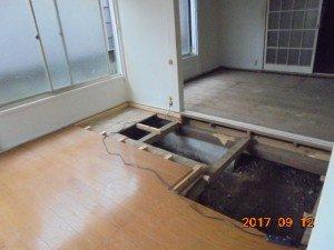 【2DK】埼玉県蕨市:特殊清掃1の施工後