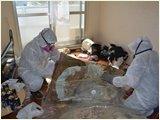【岡山県】孤独死現場の特殊クリーニング・除菌と脱臭・遺品の処分の施工後