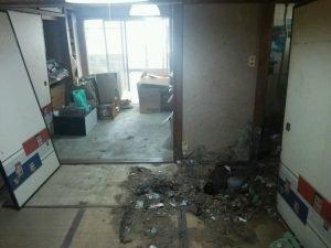 大阪府八尾市でのゴミ屋敷清掃の施工後