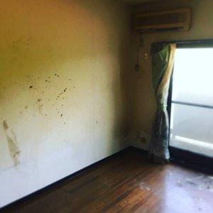 ゴミの量が多いお部屋でも対応可能です。の施工後