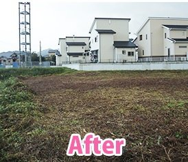 草刈りの施工後