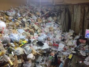 ゴミ屋敷清掃の作業事例の施工前