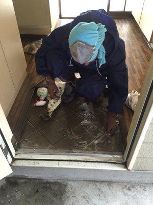 横浜市港南区での特殊清掃の施工後