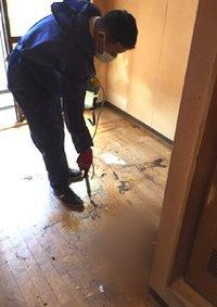 特殊清掃や、急増中!のゴミ屋敷の清掃もおまかせください。