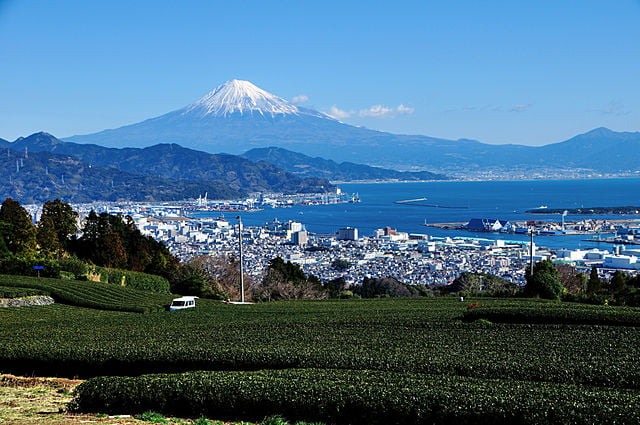 静岡県静岡市の遺品整理の特徴