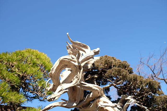 埼玉県さいたま市西区の遺品整理の特徴